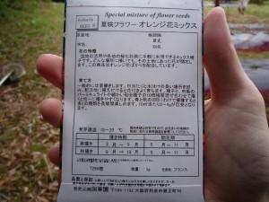 夏咲きフラワー オレンジ花ミックス 袋